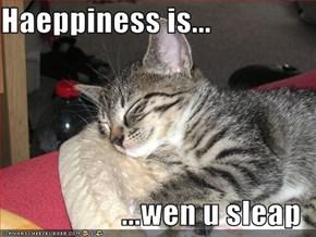 Haeppiness is...  ...wen u sleap