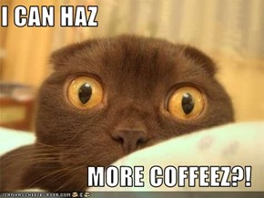 I CAN HAZ  MORE COFFEEZ?!