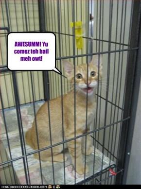 AWESUMM! Yu comez teh bail meh owt!