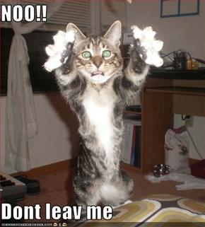 NOO!!  Dont leav me