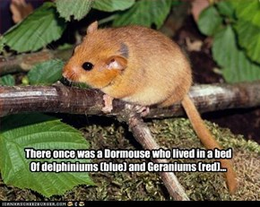 There once was a Dormouse who lived in a bed Of delphiniums (blue) and Geraniums (red)...
