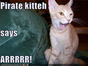 Pirate kitteh says ARRRRR!