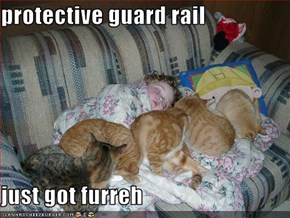 protective guard rail   just got furreh
