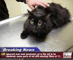 Breaking News - Ignorant man took basement cat to the vet to be neutered, some parts of vet still missing! More at 11.