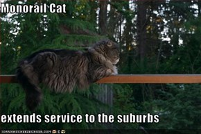 Monorail Cat  extends service to the suburbs