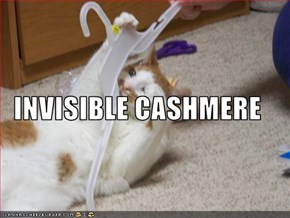INVISIBLE CASHMERE