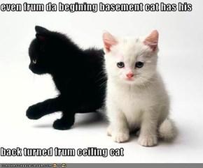 even frum da begining basement cat has his   back turned frum ceiling cat