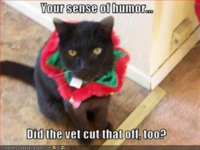 Your sense of humor...  Did the vet cut that off, too?