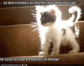 ... so den ceiling cat sent his only bekitten son...  to saves u frum da horrors of below!
