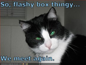 So, flashy box thingy...  We meet again.
