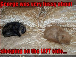 George was very fussy about  sleeping on the LEFT side...