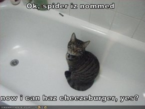 Ok, spider iz nommed  now i can haz cheezeburger, yes?