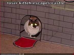 laser kitteh escapes castle
