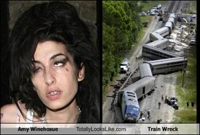 Amy Winehosue Totally Looks Like Train Wreck