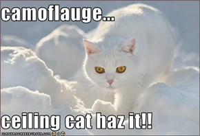 camoflauge...  ceiling cat haz it!!