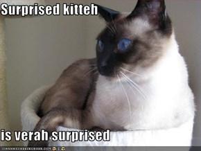 Surprised kitteh  is verah surprised