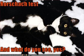 Rorschach test  And what do you see, yes?