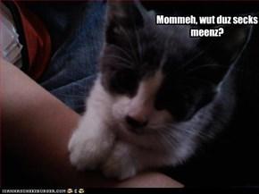 Mommeh, wut duz secks meenz?
