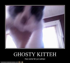 GHOSTY KITTEH