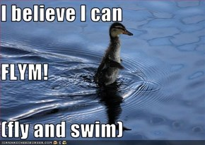 I believe I can  FLYM! (fly and swim)