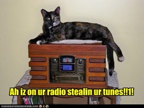 Ah iz on ur radio stealin ur tunes!!1!