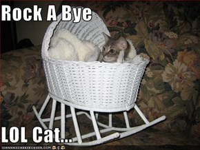 Rock A Bye   LOL Cat...