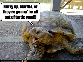 Hurry up, Martha, or they're gonna' be all out of turtle wax!!!