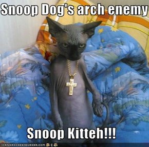 Snoop Dog's arch enemy  Snoop Kitteh!!!
