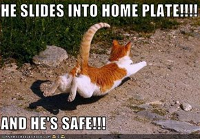 HE SLIDES INTO HOME PLATE!!!!  AND HE'S SAFE!!!