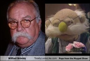 Wilford Brimley Totally Looks Like Pops from the Muppet Show