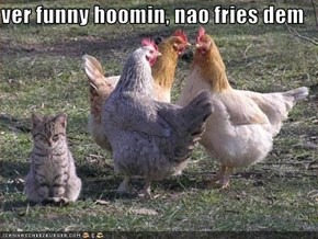 ver funny hoomin, nao fries dem