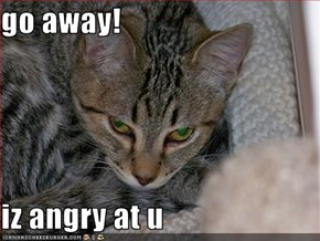 go away!  iz angry at u