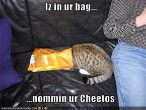 Iz in ur bag...  ...nommin ur Cheetos