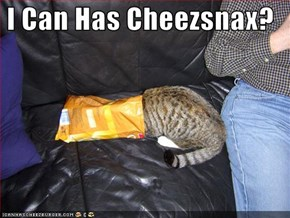 I Can Has Cheezsnax?