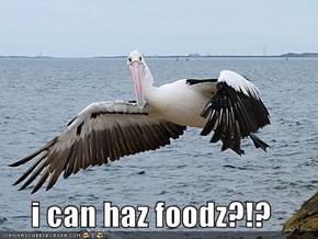 i can haz foodz?!?
