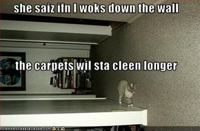 she saiz ifn I woks down the wall the carpets wil sta cleen longer