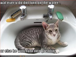 wat ever u do dnt turn on the water..,  or else he willz turn into gremlin!