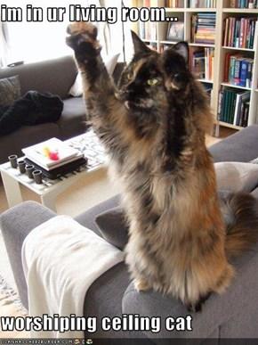 im in ur living room...  worshiping ceiling cat