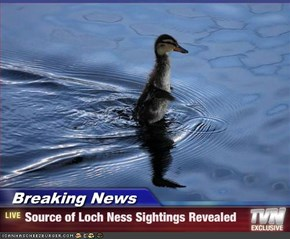 Breaking News - Source of Loch Ness Sightings Revealed