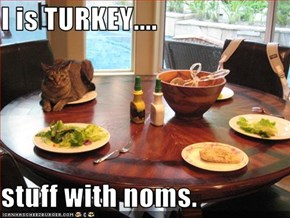I is TURKEY....  stuff with noms.