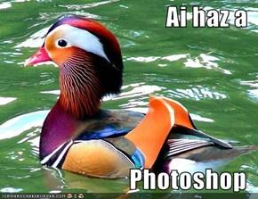 Ai haz a  Photoshop