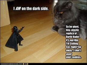 I          on the dark side.