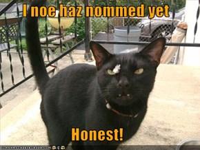 I noe haz nommed yet  Honest!