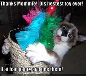 Thanks Mommie!  Dis bestest toy ever!  If ai had pantz, ai'd pee them!
