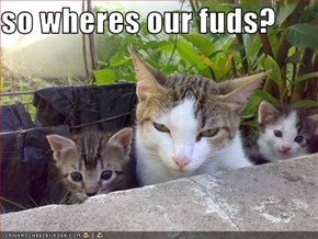 so wheres our fuds?