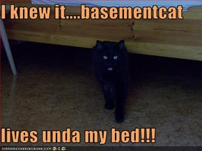 I knew it....basementcat  lives unda my bed!!!