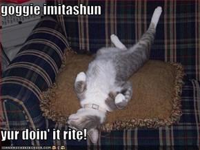 goggie imitashun  yur doin' it rite!
