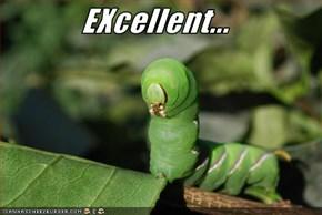 EXcellent...