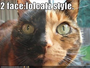 2 face:lolcatz style.