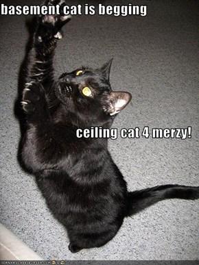 basement cat is begging  ceiling cat 4 merzy!